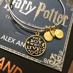 ALEX AND ANI: The Boy Who Lived Limited Edition